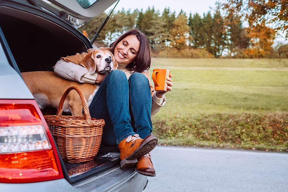 Девушка с собакой в авто
